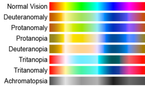 Simulated color palettes for normal vision and various forms of color blindness.